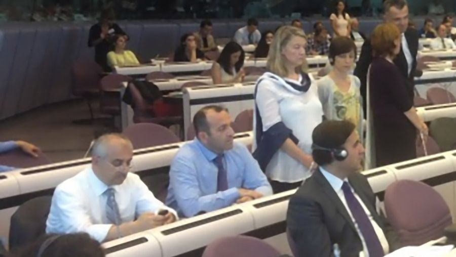 EU Discusses Gezi Park and Freedom of Expression